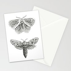 Moth Study Stationery Cards