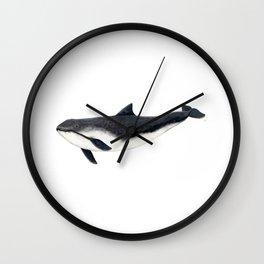Harbour porpoise (Phocoena phocoena) Wall Clock