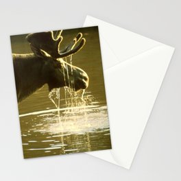 Moose Dipping His Head Into Water Stationery Cards