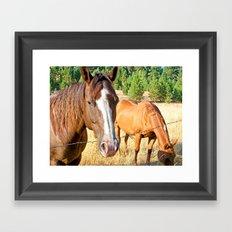 Country Livin' Framed Art Print