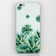 tropical stars  iPhone & iPod Skin