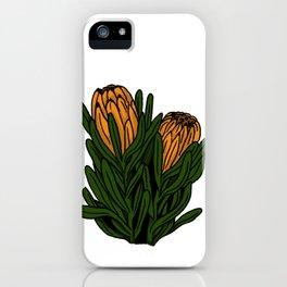 floral protea illustration iPhone Case