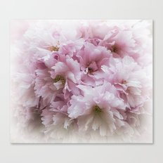 Pink Frills Canvas Print