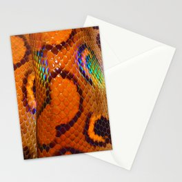 Rainbow Boa Stationery Cards
