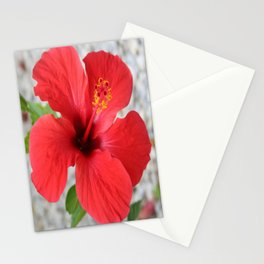 A Stunning Scarlet Hibiscus Tropical Flower Stationery Cards