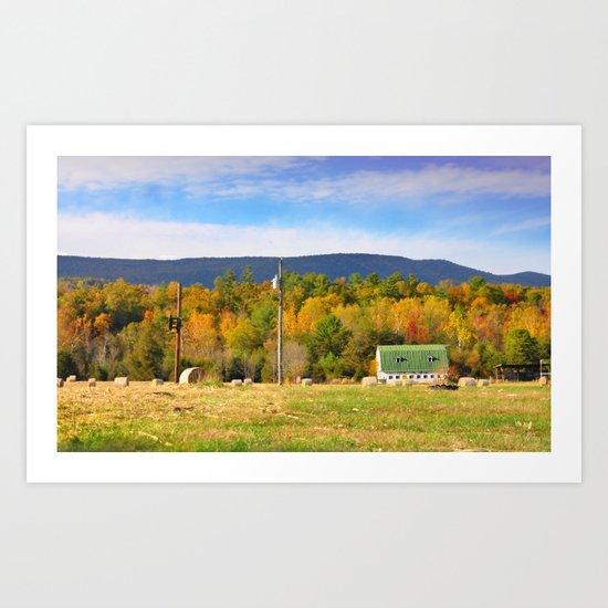 Barn in Field, Mt. Jackson, VA Art Print