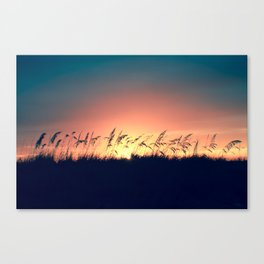 Seagrass Sunset Canvas Print