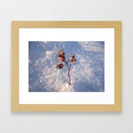 Snow Growth Framed Art Print