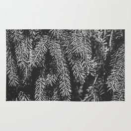Branches of spruce full frame nature background. Rug
