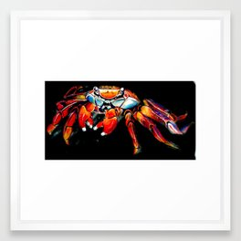 Sally Lightfoot Framed Art Print