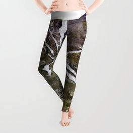Dragonfly traveling around the world Leggings