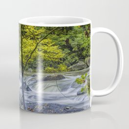 Rocky Broad River in October Coffee Mug