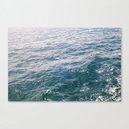 SEABRIGHT Canvas Print