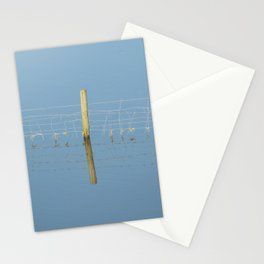reflected Stationery Cards