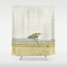 tree of life::kenya Shower Curtain