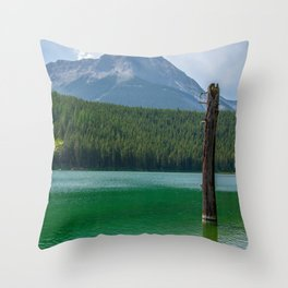 Stick in the Lake Throw Pillow