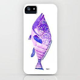 Grouper - violet big fish - mérou - gros poisson iPhone Case