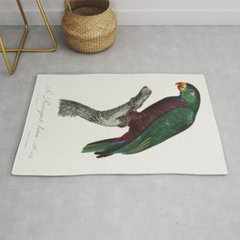 The Purple-Naped Lory Lorius domicella from Natural History of Parrots (1801-1805) by Francois Levai Rug