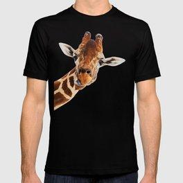Silly Giraffe // Wild Animal Portrait Cute Zoo Safari Madagascar Wildlife Nursery Ideas Decor T-shirt