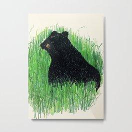 Denali bear Metal Print