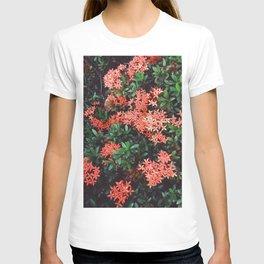 West indian Jasmine T-shirt