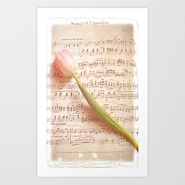 Tulip Music  Art Print