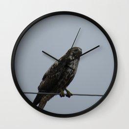 Harlan Hawk Wall Clock