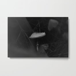 Toasted Marshmallow Mushroom from Oregon Metal Print