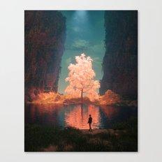 ILLUMINATED PATH (everyday 07.06.17) Canvas Print