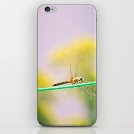 Dragonfly! iPhone Skin