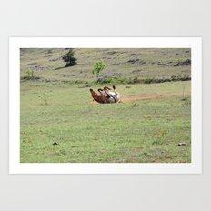 Rolling Horse Art Print