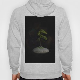 The Second Sanctuary in Space Hoody