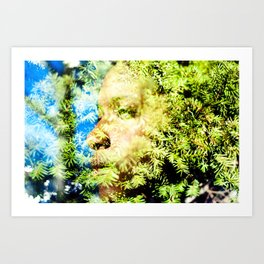 Spring Exposure  Art Print