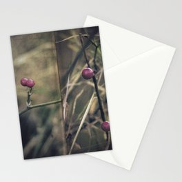 Stanza Stationery Cards