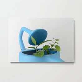 The Uncomfortable watering can and leaves Metal Print