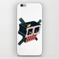 Brick Crossbones and a Bird iPhone & iPod Skin