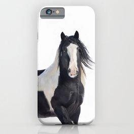 Gypsy Vanner Horse iPhone Case