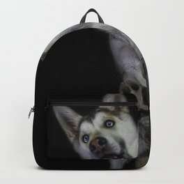 Husky from underneath Backpack