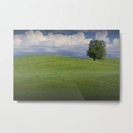 Lone Tree on Hill of Green Grass Metal Print