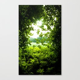 She Made Her Own Path Canvas Print