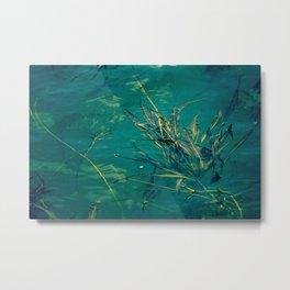 Blue Pond Branches Metal Print