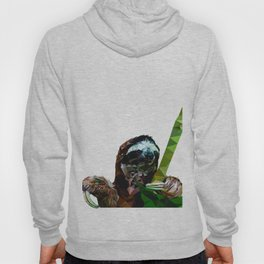 Sloth Low Poly Hoody