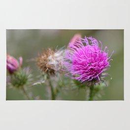 Thistle flower Rug