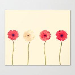 Technicolour Flowers  Canvas Print