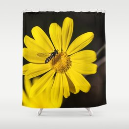 Hover Fly Shower Curtain