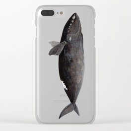 Northern right whale (Eubalaena glacialis) Clear iPhone Case
