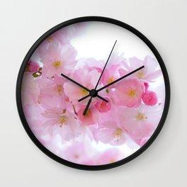 Pink Japanese Cherry Tree Blossom Wall Clock