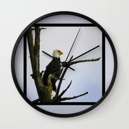 eagle striking a pose (square) Wall Clock