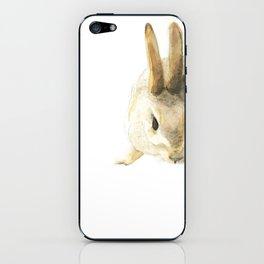 CHINESE ZODIAC (Rabbit)  iPhone Skin