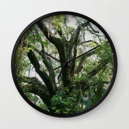 Florida Live Oak Wall Clock